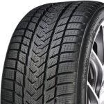 GRIPMAX 255/35 R 21 TL 98V PRO WINTER